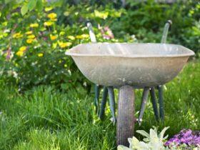 Gärtnerbedarf & Zubehör